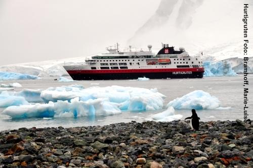 Hurtigruten arktis antarktis