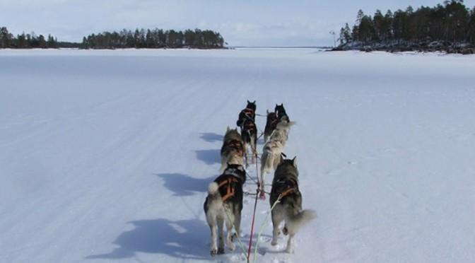 Winterreise Inarisee