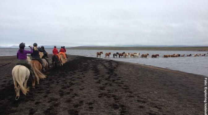 Island Reiterreise Blaue Lagune