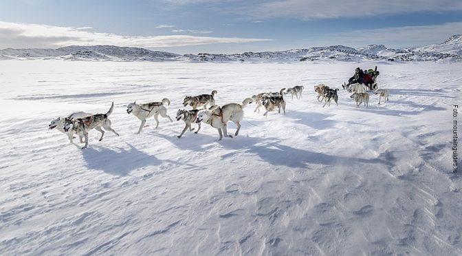 Grönland Reisen Winter