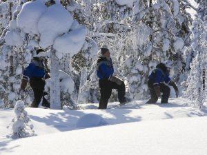 Rovaniemi_Schneeschuhwandern