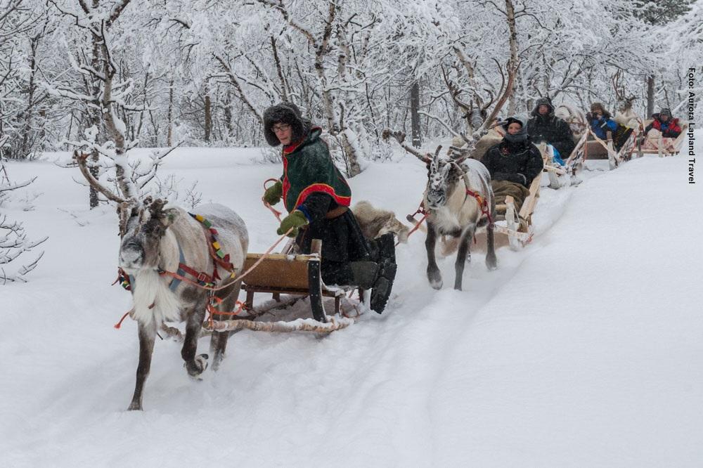 Weihnachten in Lappland - Feiern Sie bei Samen, Rentiern und Huskies
