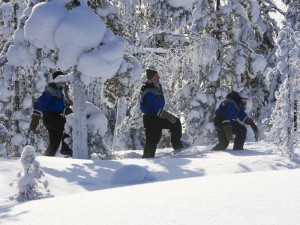 Schneeschuhwanderung Rovaniemi