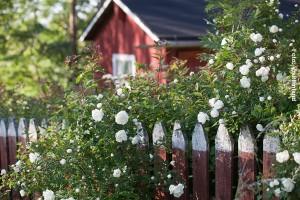 Finnland-Ferienhaus