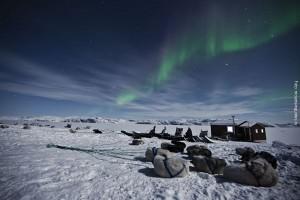 Groenland Huskytour Nordlicht