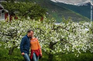 Norwegenreise_Hardangerfjord