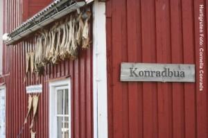 Norwegen_Lofoten_Reise