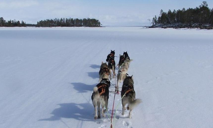 Nordlichter Tour Lappland - Polarlichter-in-Finnland
