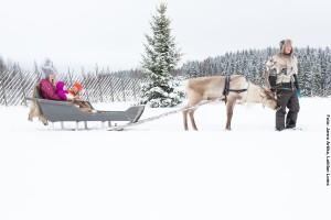 Rentierschlittenfahrt Karelien