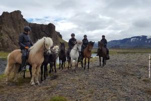 Island Reiterreisen